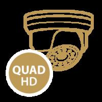 security measures icon quad hd
